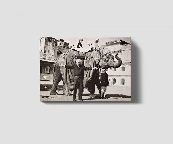 Calder in India Book Cover