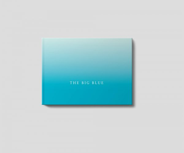The Big Blue Book Cover